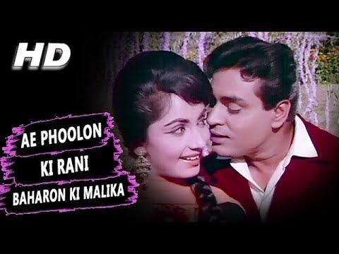 Xxx Mp4 Ae Phoolon Ki Rani Baharon Ki Malika Mohammed Rafi Arzoo 1965 Songs Sadhana Rajendra Kumar 3gp Sex