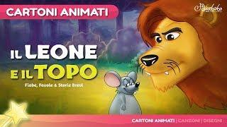 Il Leone e il topo | Cartoni Animati