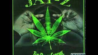 Jay Z - The Black Chronic - Justify My Thug (Bash Brothers Chronic remix)