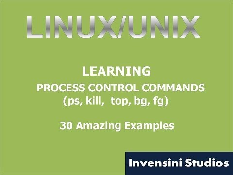 Linux Basic Process Control Command