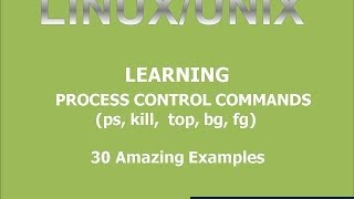 Linux Basic Process Control Command