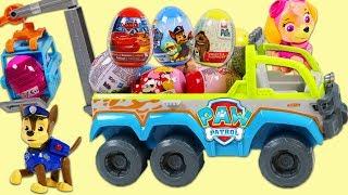 Paw Patrol Pups Go On Surprise Toys Easter Egg Hunt!