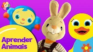 Vídeos Educativos para crianças – Compilação | Desenhos Educativos | Aprender Animais | BabyFirst