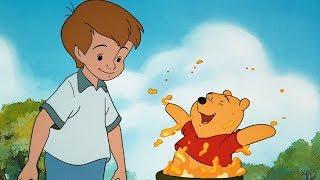 Boy & Bear | Pogo