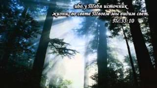 РОДНИК.wmv
