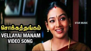 Vellayai Manam Video Song   Chokka Thangam Tamil Movie   Vijayakanth   Soundarya   Deva