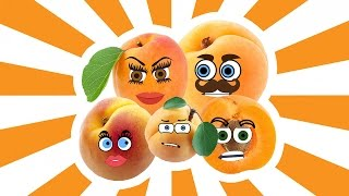 Apricot Finger Family Song Nursery Rhymes for Kids | Learning Fruits