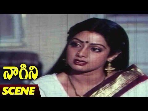 Xxx Mp4 Sridevi Emotional Scene Naagini Telugu Movie Rishi Kapoor Sri Devi 3gp Sex