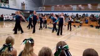2014 HMS Fly Girls - Shake It Off