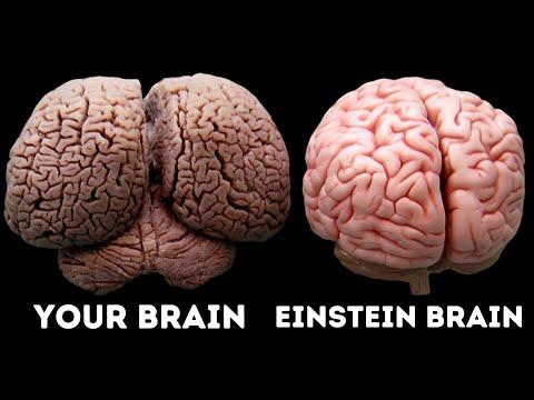 Xxx Mp4 What Made Albert Einstein A Genius 3gp Sex