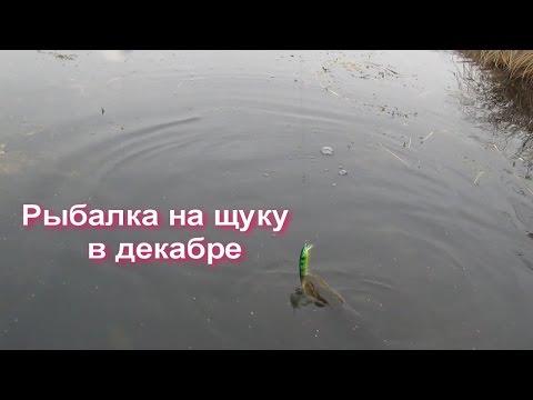 рыбалка на веле загорские дали щука