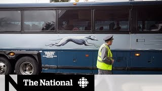 Greyhound service in Western Canada is over, now what?