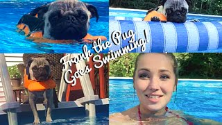 Frank and I Go Swimming! | Follow Me Around Friday!