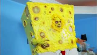 SpongeKnob SquareNuts Without the Nuts