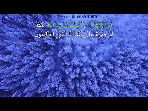AMAZING VIEWS with 1-1 WORDS tracing, FULL HD, Surah Enam, 1 of World's Best Quran V. in 50+ Langs.
