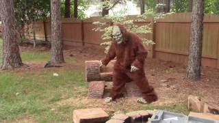 Log Bench using chainsaw