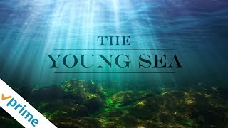 The Young Sea | Trailer | Available Now