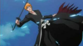 Bleach - Animal I have become AMV