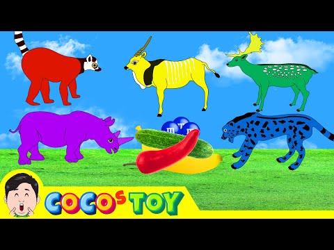 기분에 따라 색이 변하는 동물들 색깔놀이 어린이 동물 만화 동물이름 외우기 컬렉타ㅣ꼬꼬스토이