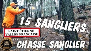 Chasse sanglier 2018 : Grosse compagnie de sangliers /HUNTING WILD BOAR/CAZA/CACCIA