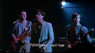 The Fleshtones - Shadow Line (HQ) Live
