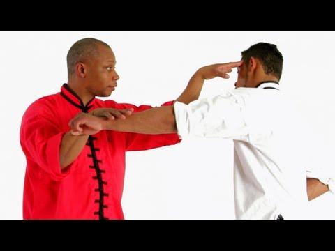 5 Animals of Kung Fu Shaolin Kung Fu