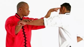 5 Animals of Kung Fu | Shaolin Kung Fu
