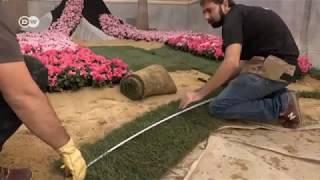 مهرجان الزهور بقرطبة .. فراديس تنافس على أجمل التصاميم | يوروماكس