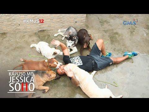 Kapuso Mo Jessica Soho The Pack Leader