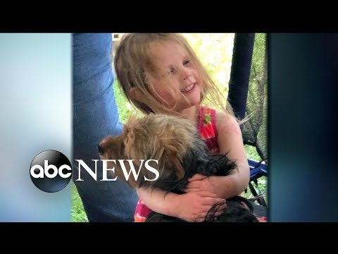 3-year-old missing girl rescued by family dog