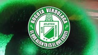 Logo Bogotá Verdolaga - Mi Pasion Es arte