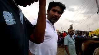mohammadpur basila gorur hat - Dhaka most convenient cattle hut