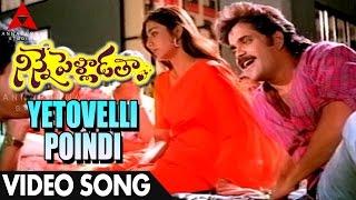 Yetovelli Poindi Manasu Video Song - Ninne Pelladatha Movie - Nagarjuna,Tabu