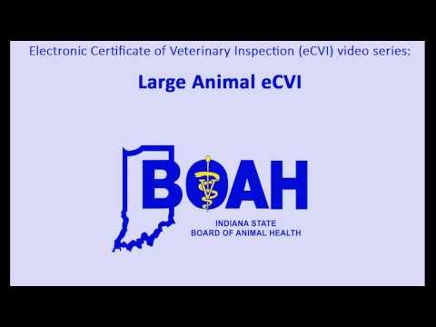 Large Animal eCVI Tutorial