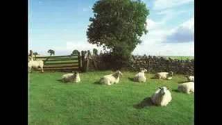 The KLF - Wichita Lineman Was a Song I Once Heard