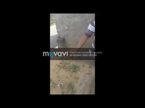 Xxx Mp4 شاهد امرأة تسجل لحظة مقتلها على يد جارها بطلق ناري 3gp Sex