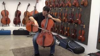 Cello Pablo Farias - The Swan