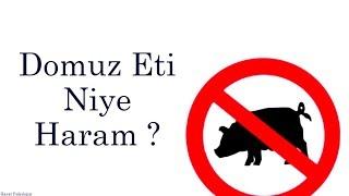 Domuz Eti Niye Haram ?
