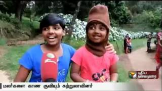 Ooty Flower show 2016 in Udhagamandalam attract the tourists