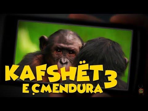 Kafshët e Çmendura E3