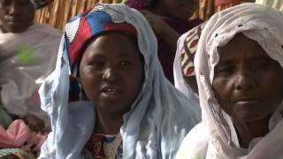 FAO-Dimitra Clubs in Niger: Access to Water and Land