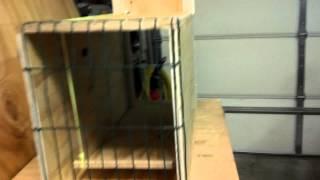 Homemade possum trap