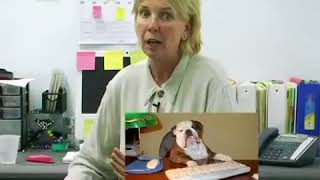 Stand Up Comedy By The Work Lady - Pets in The Office! (Stand Up Comedy)