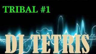 Tribal Mix - Dj Tetris - SET BicenTribal 2010 (video 1) (Trival T3