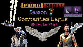 Pubg Mobile Companion Eagle Pura, Can found on Map for Free 0.12.5 season 7 Released, Tamil