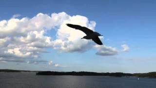 Mythology Example   The Benu Bird