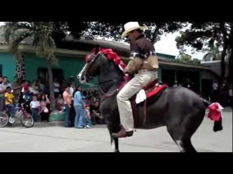 Caballo Aplasta a un Muchacho en una Feria