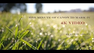 One Minute of Canon 5D Mark IV 4K Video