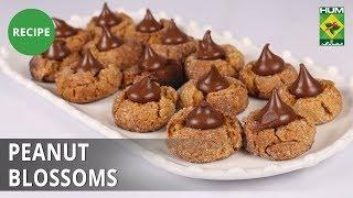 Peanut Blossoms | Evening With Shireen |  Shireen Anwar | Dessert