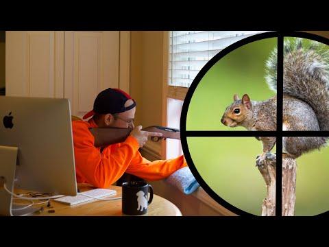 Xxx Mp4 Squirrel Hunting From My Kitchen 3gp Sex